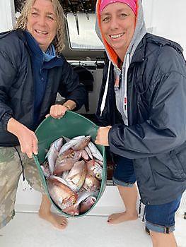 Atlantic Bonito / Seabreams Cavalier & Blue Marlin Sport Fishing Gran Canaria