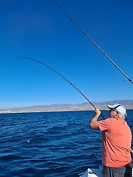 Hooked-up Cavalier & Blue Marlin Sport Fishing Gran Canaria