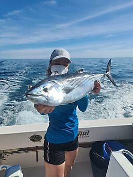 https://www.bluemarlin3.com/nl/noord-atlantische-bonito Cavalier & Blue Marlin Sport Fishing Gran Canaria