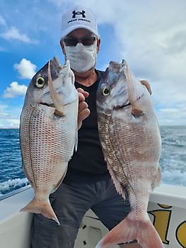 Red Seabream Cavalier & Blue Marlin Sport Fishing Gran Canaria