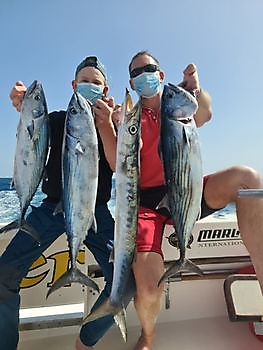 North Atlantic Bonito_s & Barracuda Cavalier & Blue Marlin Sport Fishing Gran Canaria