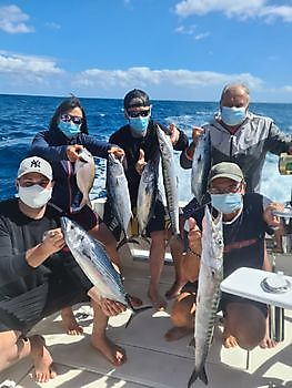 https://www.bluemarlin3.com/fr/barracuda-et-bonito-de-l_atlantique-nord Cavalier & Blue Marlin Sport Fishing Gran Canaria