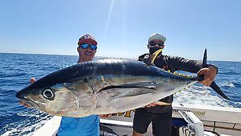 11/15 tonni Cavalier & Blue Marlin Pesca sportiva Gran Canaria