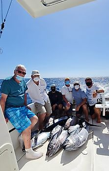 https://www.bluemarlin3.com/fr/bien-joue Cavalier & Blue Marlin Sport Fishing Gran Canaria