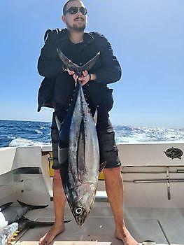 El atún blanco Pesca Deportiva Cavalier & Blue Marlin Gran Canaria