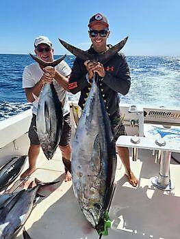 Atún Albacora y Atún Ojo Grande Pesca Deportiva Cavalier & Blue Marlin Gran Canaria