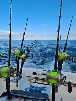 The show goes on Cavalier & Blue Marlin Sport Fishing Gran Canaria