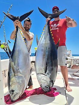 2 atún patudo Pesca Deportiva Cavalier & Blue Marlin Gran Canaria