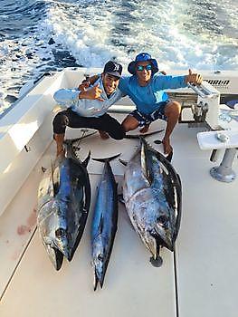 Beautifull catch Cavalier & Blue Marlin Sport Fishing Gran Canaria