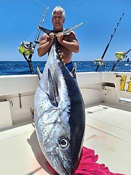 140 kg Großaugenthun - 1/2 Roter Thun Cavalier & Blue Marlin Sportfischen Gran Canaria
