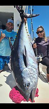 22nd Bluefin & 1 Large Bigeye Tuna Cavalier & Blue Marlin Sport Fishing Gran Canaria