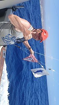 https://www.bluemarlin3.com/es/felicidades-peter Pesca Deportiva Cavalier & Blue Marlin Gran Canaria