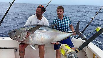 1/2 Big Eye Tuna Cavalier & Blue Marlin Sport Fishing Gran Canaria