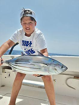 Gut gemacht Cavalier & Blue Marlin Sportfischen Gran Canaria