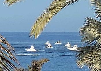 XXXII Pasito Big Game Tounament Cavalier & Blue Marlin Sport Fishing Gran Canaria