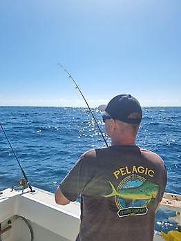 https://www.bluemarlin3.com/de/hook-up Cavalier & Blue Marlin Sportfischen Gran Canaria