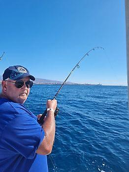 https://www.bluemarlin3.com/es/hook-up Pesca Deportiva Cavalier & Blue Marlin Gran Canaria