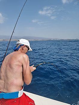 https://www.bluemarlin3.com/es/hooked-up Pesca Deportiva Cavalier & Blue Marlin Gran Canaria