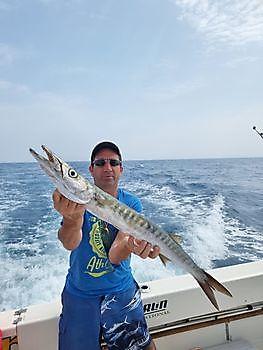 Baracuda Cavalier & Blue Marlin Sportfischen Gran Canaria