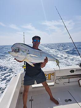 https://www.bluemarlin3.com/it/dorado Cavalier & Blue Marlin Pesca sportiva Gran Canaria