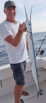 https://www.bluemarlin3.com/it/aguglia Cavalier & Blue Marlin Pesca sportiva Gran Canaria