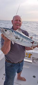 https://www.bluemarlin3.com/it/bonito-del-nord-atlantico Cavalier & Blue Marlin Pesca sportiva Gran Canaria